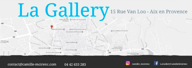 vernissage, exposition galerie